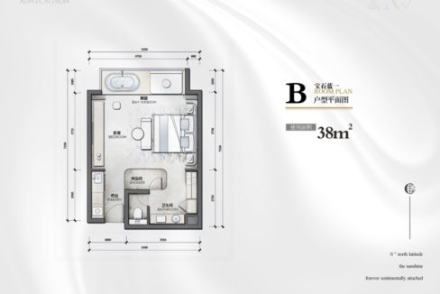 B 户型平面图 Layout